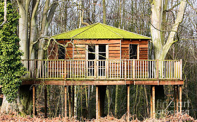 Luxury Tree House In The Woods Print by Simon Bratt Photography LRPS