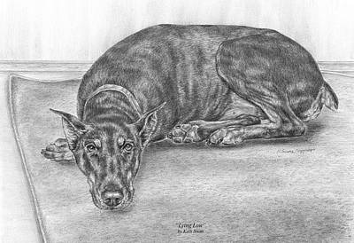 Doberman Drawing - Lying Low - Doberman Pinscher Dog Art Print by Kelli Swan