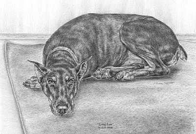 Drawing - Lying Low - Doberman Pinscher Dog Art Print by Kelli Swan