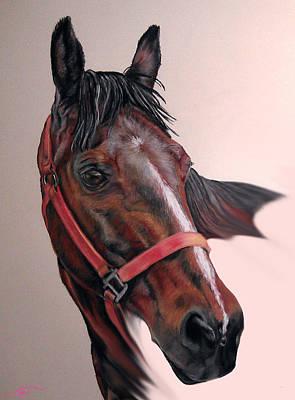 Pastel - Lynette's Quarter Horse by Ann Marie Chaffin