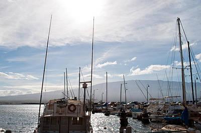 Decor Photograph - Ma'alaea Marina by Paulette B Wright