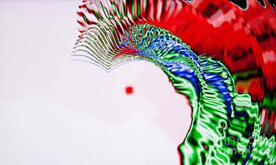 Macaw Art Print by Tashia Peterman