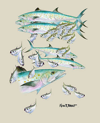 Painting - Mackerel Montage by Kevin Brant