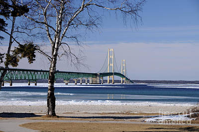 Photograph - Mackinac Bridge With Trees by Ronald Grogan