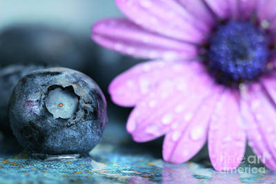 Macro Shot Of A Blueberry Print by Sandra Cunningham