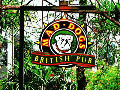 Photograph - Mad Dog Pub San Antonio by Jo Sheehan