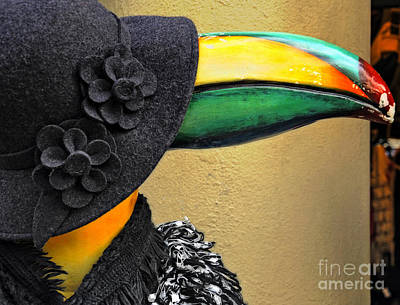 Photograph - Madame Toucan Of New Orleans by Kathleen K Parker