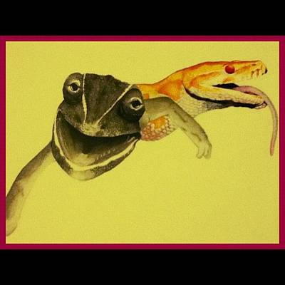 Reptiles Wall Art - Photograph - Made By My Brother, I Love The Stuff He by Carlu Chi