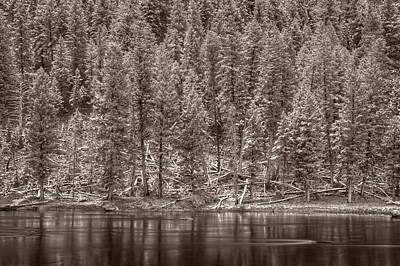 Madison River Yellowstone Bw Original