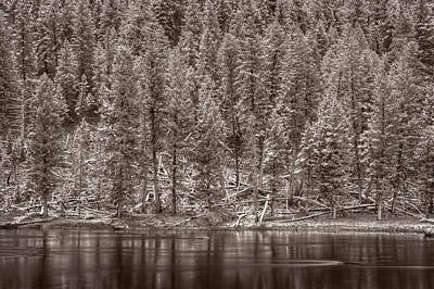Madison River Yellowstone Bw Original by Steve Gadomski