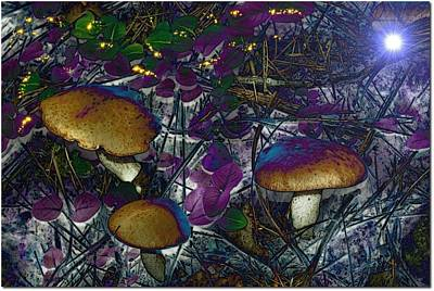 Magic Mushrooms Art Print by Barbara S Nickerson