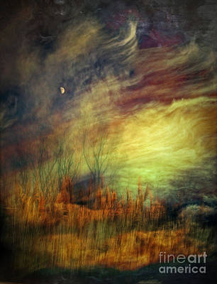 Magical Woods Art Print by Emilio Lovisa