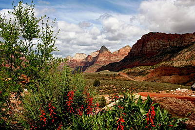 Magnificent Vistas In Zion Art Print