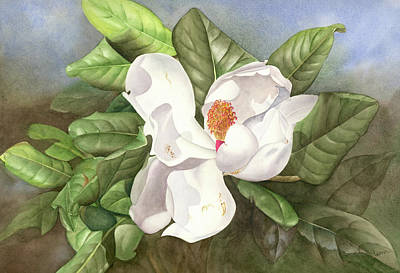 Magnolia I Art Print by Leona Jones