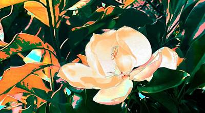 Painting - Magnolias by G Linsenmayer