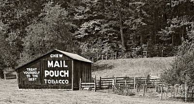 Photograph - Mail Pouch Tobacco Barn In Black And White by Kathleen K Parker