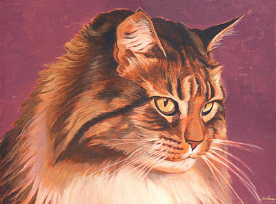Maine Painting - Maine Coon Portrait by Shawn Shea