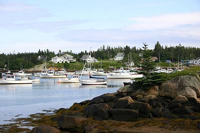 Photograph - Maine by Jeanne Andrews