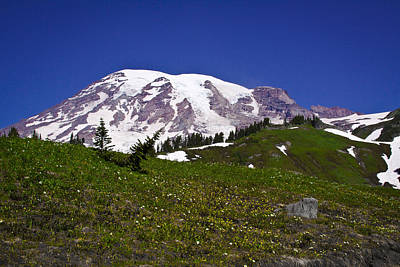 Photograph - Majestic Mount Rainier by David Patterson