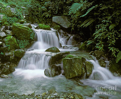 Photograph - Makalu Creek - Nepal by Craig Lovell