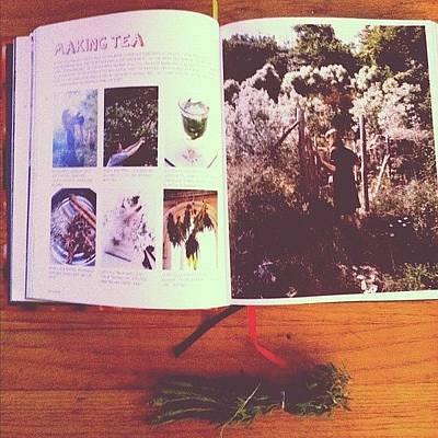 Lavender Photograph - Making Tea. #book #tea #homemade by Allison Faulkner
