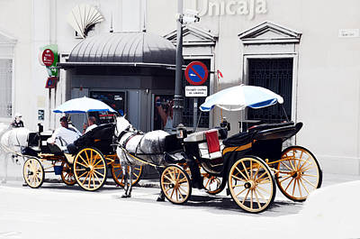 Photograph - Malaga Spain Horse 1 by Allan Rothman