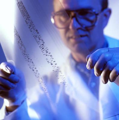 Male Technician Examines Dna Fingerprints Art Print by Tek Image