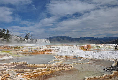 Photograph - Mammoth Hot Springs by Victoria Porter