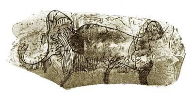 Mammoth, Prehistoric Bone Art Art Print