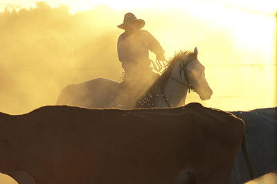 Working Cowboy Photograph - Man On Horse Working Cattle In Yards, Bullo River Station, Near Kununurra, Northern Territory, Australia, Australasia by Michael Gebicki