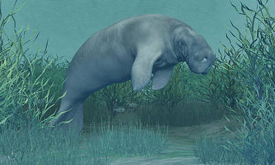 Digital Art - Manatee by Walter Colvin