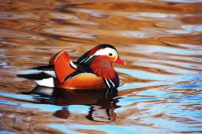 Mandarin Duck Art Print by Juan  Cruz
