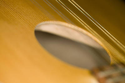 Photograph - Mandolin Core by C Ribet