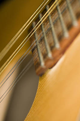 Photograph - Mandolin Core II by C Ribet