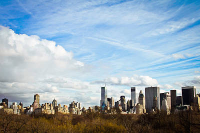 Manhattan Behing The Central Park Art Print by Ezequiel Rodriguez Baudo