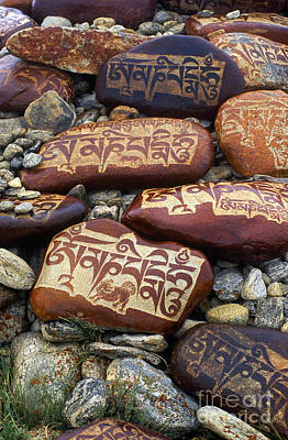 Photograph - Mani Stones - Lake Manasarovar Tibet by Craig Lovell