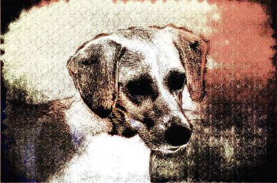 Puppy Digital Art - Mans Best Freind by Bill Cannon