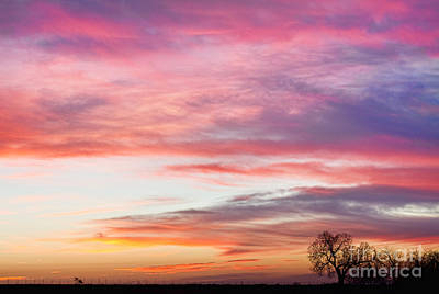 March Countryside Sunrise  Art Print