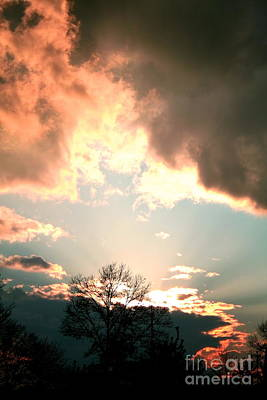 Photograph - March Sunset 2012 by Christina A Pacillo