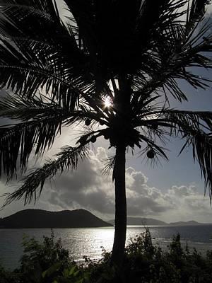 Photograph - Marina Cay Sunrise by Andrea Linquanti