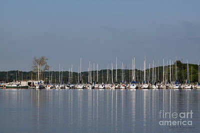 Art Print featuring the photograph Marina by Todd Blanchard