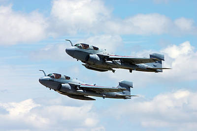 Prowler Photograph - Marine Prowlers by Pat Speirs