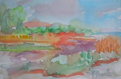 Maine Landscapes Painting - Marlboro Beach Prominence by Francine Frank