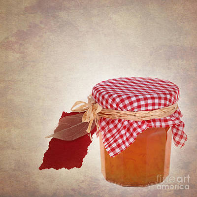 Gingham Photograph - Marmalade Gift Vintage by Jane Rix