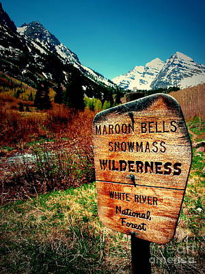 Photograph - Maroon Bells Iv by Christine S Zipps