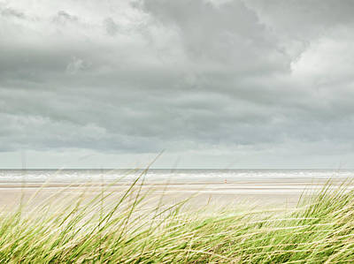 Marram Grass On Beach By Sea Art Print by Dune Prints by Peter Holloway
