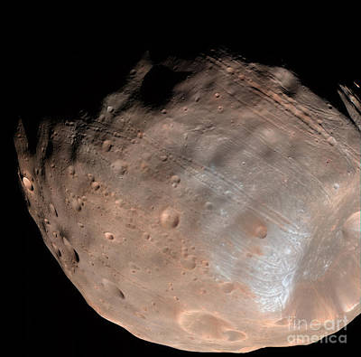 Photograph - Mars Moon Phobos by Stocktrek Images