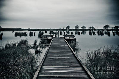 Photograph - Marsh Boardwalk by Jill Smith
