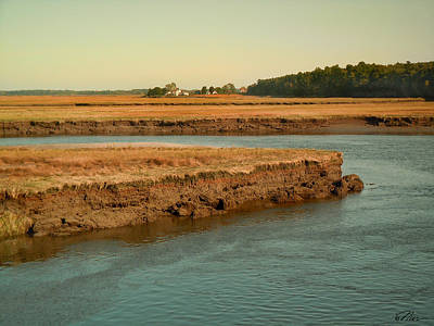 Photograph - Marsh Of Pine Point by Nancy Griswold