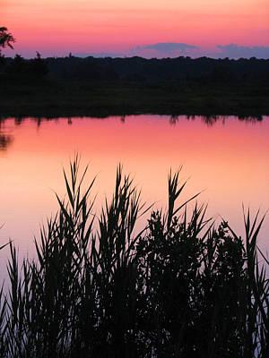 Photograph - Marsh Sunset by Clara Sue Beym